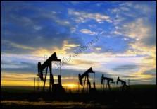 oil11875